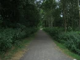 Brandon - Bishop Auckland Railway Path
